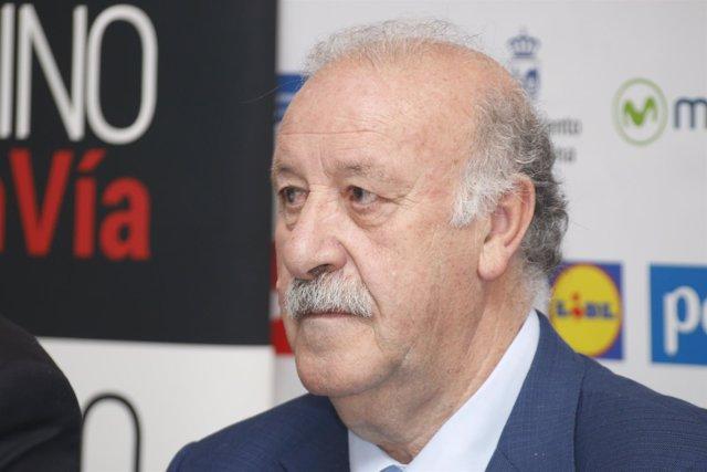 Vicente del Bosque, Presentación Campus, Selección Española