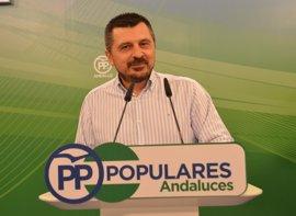 """PP-A: Susana Díaz es la """"mano negra"""" del """"proceso de desestabilización del PSOE"""""""