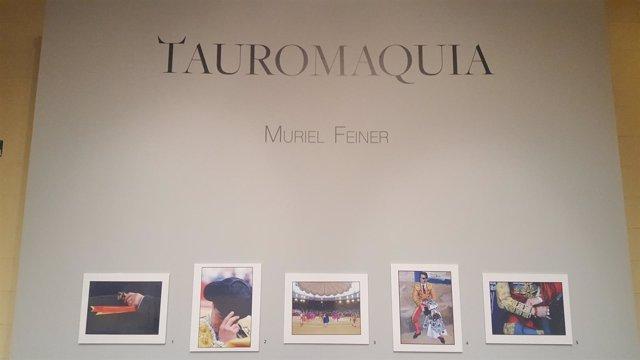 Fotos 'Tauromaquia' De Muriel Feiner