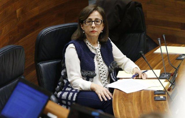 Belén Fernández, durante el pleno.