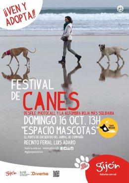 Cartel festival de canes.