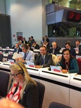 El alcalde de Sevilla participa en el Comité de Regiones europeas