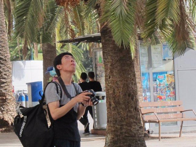 Chino, turista, turismo, cámara, asiático