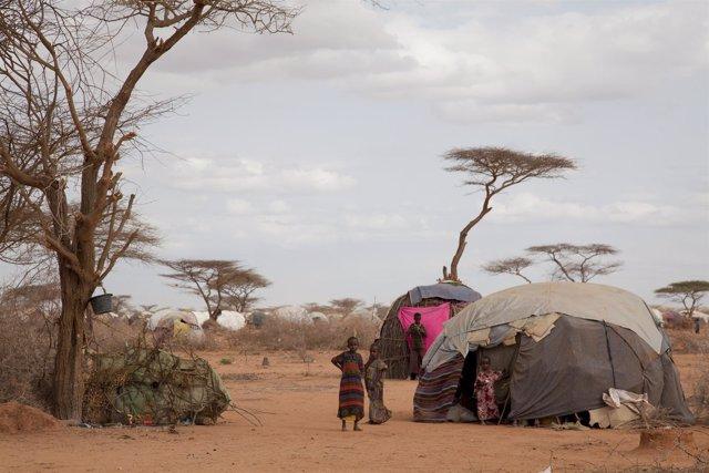 Refugiados somalíes en Dadaab