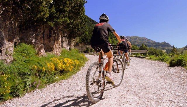 En el estudio participaron más de dos mil ciclistas aficionados