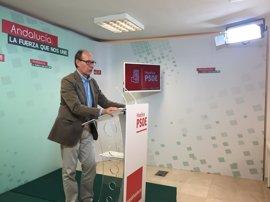 Díaz Trillo acatará la disciplina de voto en la investidura de Gobierno
