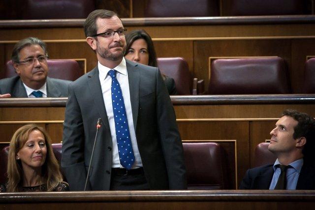 Javier Maroto, en el Congreso