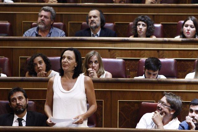 La diputada de Carolina Bescansa en el Congreso