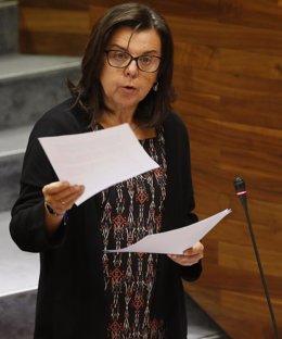 María Jesús Álvarez, nel Plenu de la Xunta.