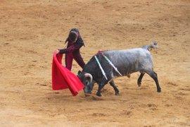"""El PSC propone buscar """"vías legales para impedir"""" que los toros vuelvan a Catalunya"""