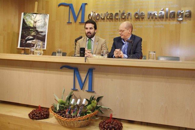 Fiesta vino y castaña Yunquera Diputación