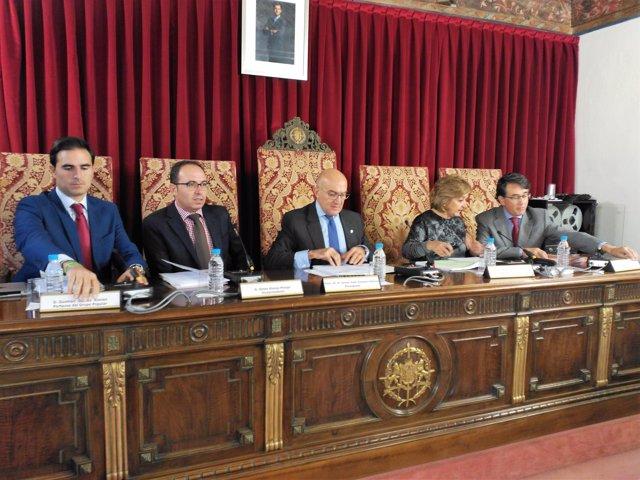 Pleno de la Diputación, 21 de octubre