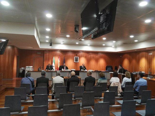 Juicio corrupción urbanística en Casares. Exalcalde Juan Sánchez y 8 más.
