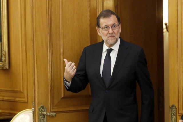 Mariano Rajoy recibido por el Rey