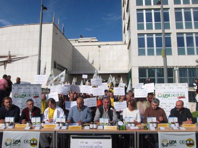 Consejo Regional de la Alianza UPA-COAG
