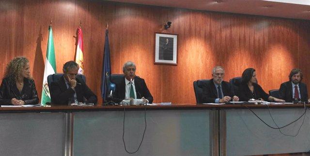 Jueces decanos reunion Málaga 2016