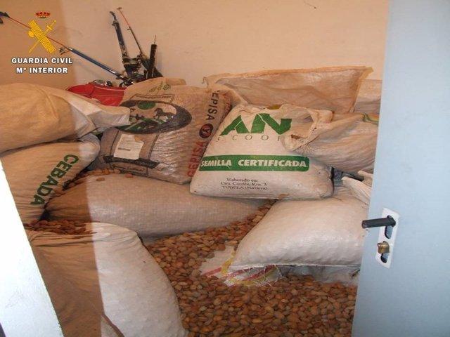 Almendras intervenidas en Ricla (Zaragoza)