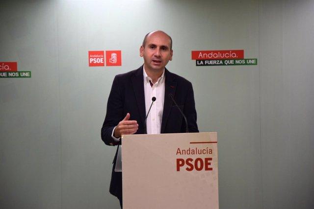 Francisco Conejo secretario política insticional PSOE-A andaluz andalucía políti