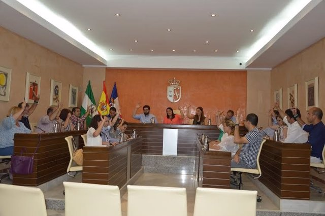 Pleno de Almonte sobre las obras del Palacio de Doñana.