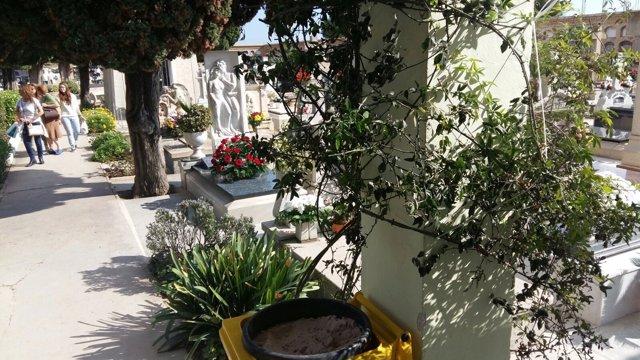 Cementerio de Paterna