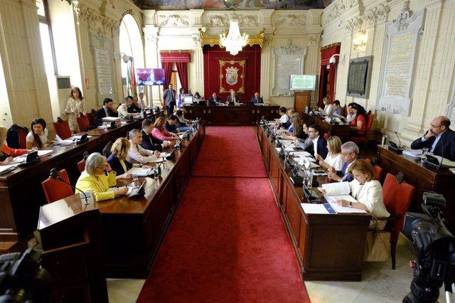 Pleno del Ayuntamiento de Málaga de mayo De la Torre
