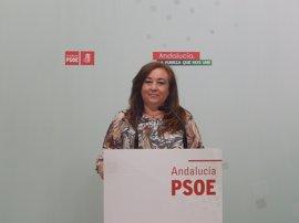 PSOE-A critica que Teresa Rodríguez no rechace el ataque de Rufián (ERC) a Andalucía