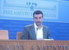 """IULV-CA anuncia enmienda a la totalidad a un presupuesto """"sin dimensión social"""""""