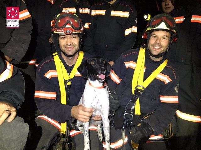 Perro rescatado por los bomberos en Atzeneta