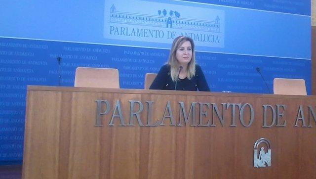 La presidenta del grupo de Podemos en el Parlamento andaluz, Carmen Lizárraga