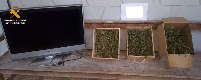 Televisor robado y marihuana incautada en la operación