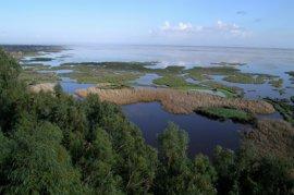 """WWF: Más de 1.700 balsas de riego acaparan el agua de Doñana, la mayoría """"ilegales"""""""