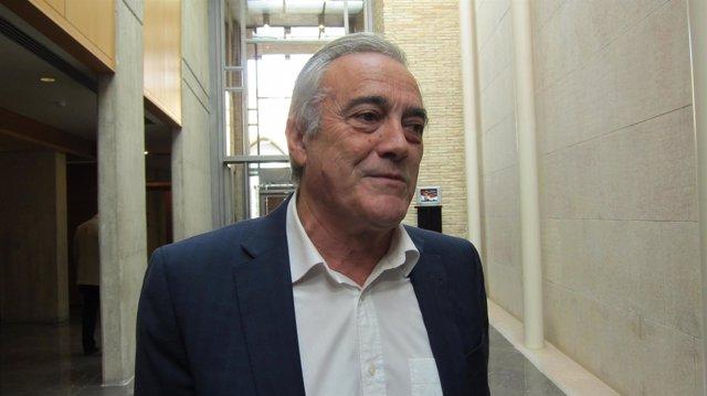 El portavoz del PSOE en las Cortes, Javier Sada