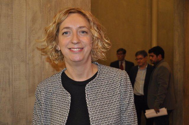 La portavoz de IU en las Cortes de Aragón, Patricia Luquin.