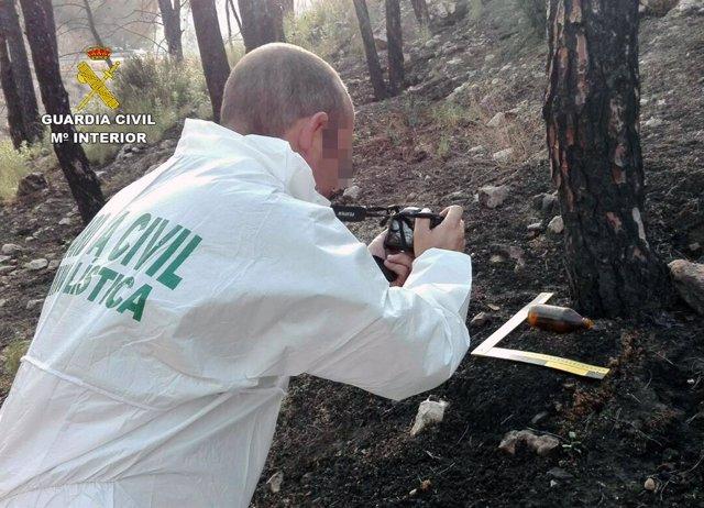 Guardia Civil esclarece siete incendios forestales atribuidos a cinco menores