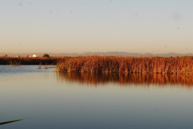 Imagen del lago de la Albufera