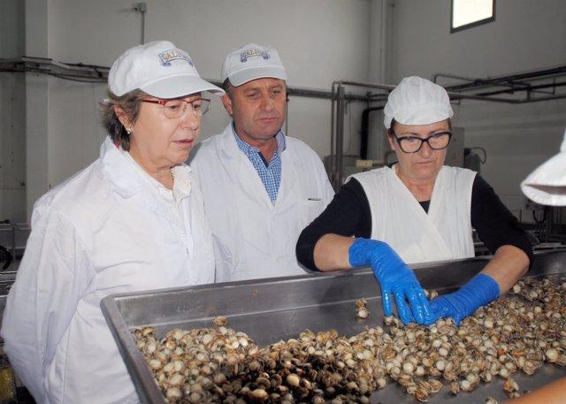 Rosa Quintana, acompañada polo director xeral de Pesca, Acuicultura e Innovación