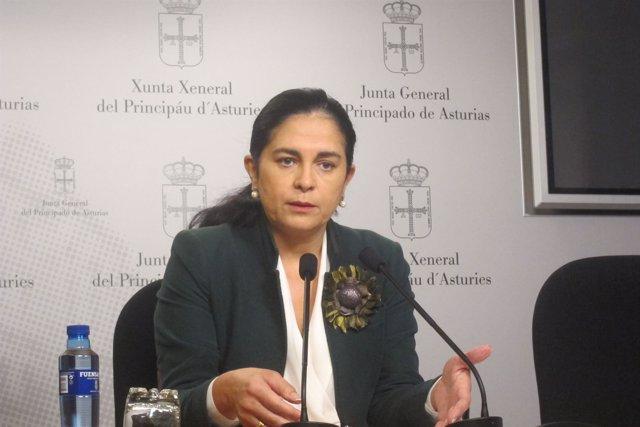 La Diputada De Foro En La Junta General, Carmen Fernández.