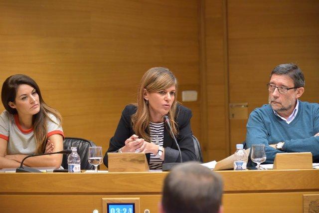 Sánchez Zaplana en la comisión de investigación de residencias de las Corts