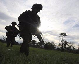 Cinco militares colombianos muertos en operaciones contra Los Pelusos
