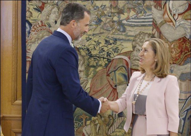 Reunión del Rey con Ana Pastor