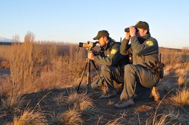 Imagen de la denuncia de los cazadores