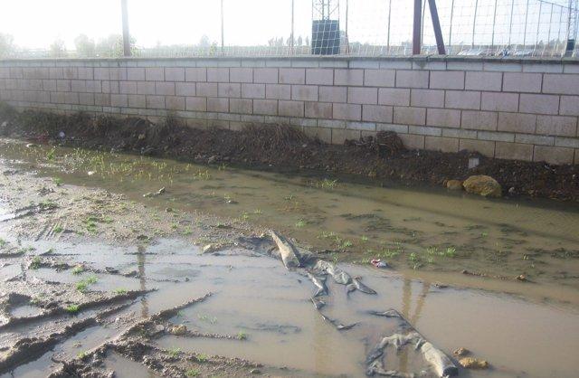 Estado de las instalaciones de Valdezorras.