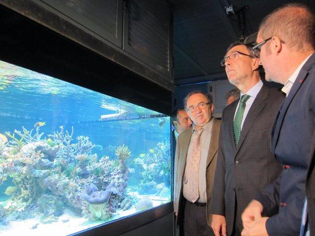 Orihuela y Ballesta, junto al conservador del Aquarium