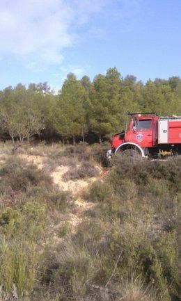 Imagen del conato de incendio de Bullas