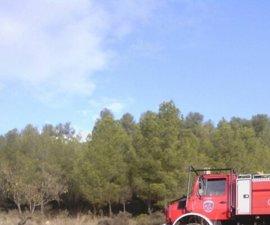 Sucesos.- El conato de incendio en Bullas calcina unos 6.000 m2 de monte