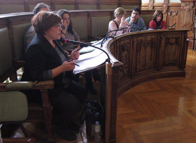 Los concejales del Sí Se Puede y Valladolid Toma la Palabra