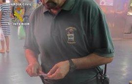 Guardia Civil se incauta de 274 kilos de coquina inmadura en dos operaciones en Ayamonte