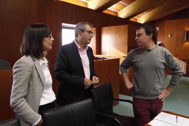 El director general de Administración Electrónica ha comparecido en las Cortes.