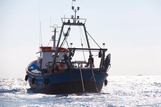 Barcos de arrastre del Mediterráneo extraen basura marina que Ecoalf hace tejido