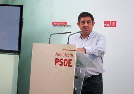 """Reyes (PSOE) espera que la gestión de Fernández de Moya sea """"mejor"""" que como alcalde Jaén"""